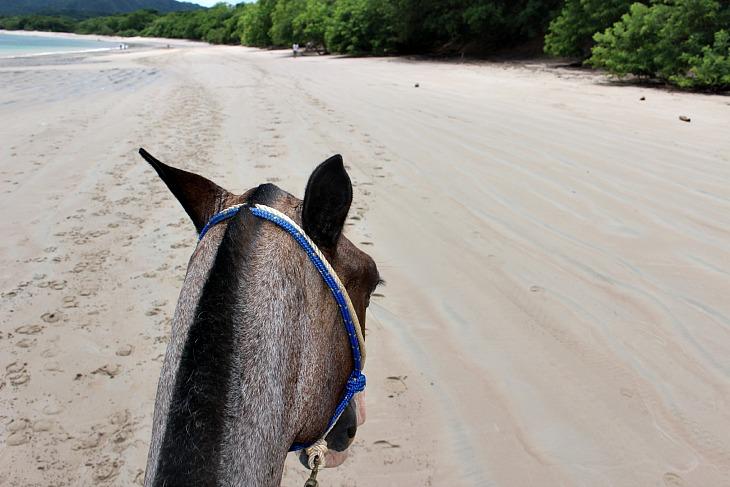 HorsebackRidingConchal