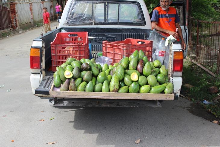 AvocadosBrasalitto