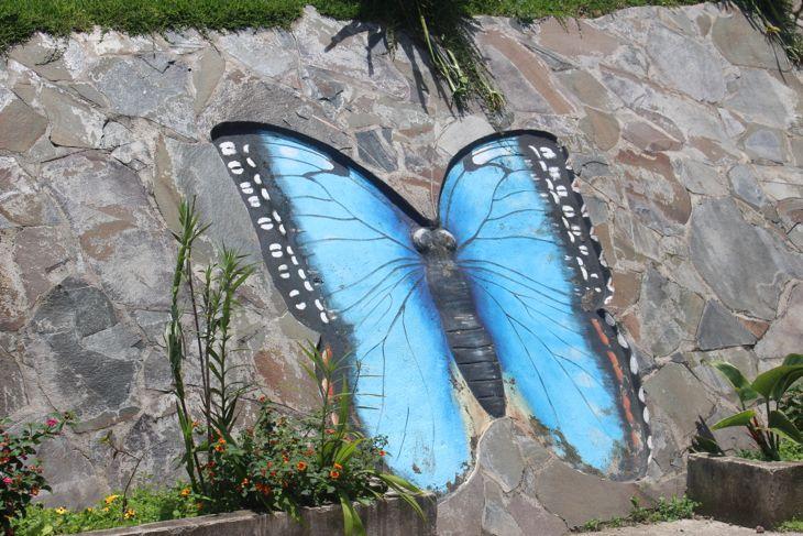 Monteverde - 125
