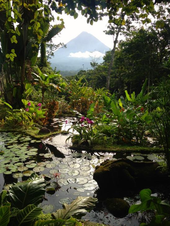Lost Iguana Arenal Costa Rica