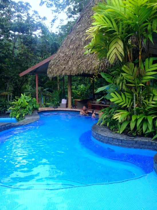 Lost Iguana Pool Swim Up Bar Costa Rica