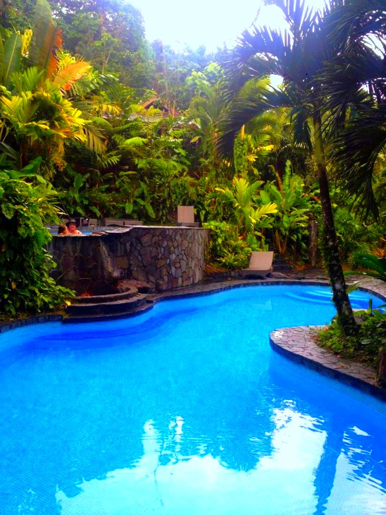 Lost Iguana Pool.jpg
