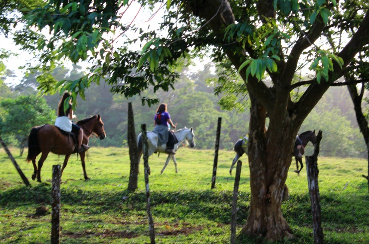 La Carolina Lodge Horseback Riding Costa Rica