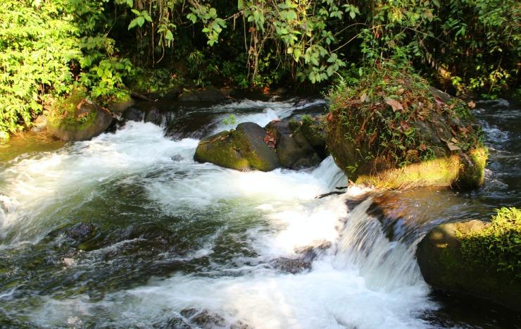 La Carolina Lodge River