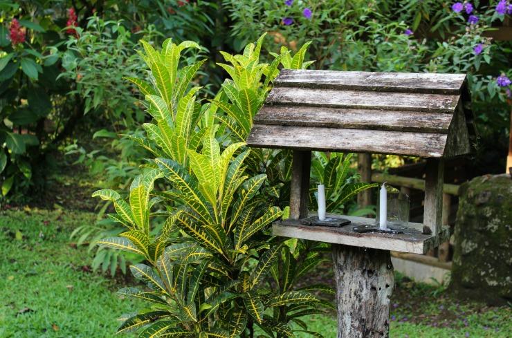 La Carolina Lodge by Candelight Costa Rica Wanderlust Living