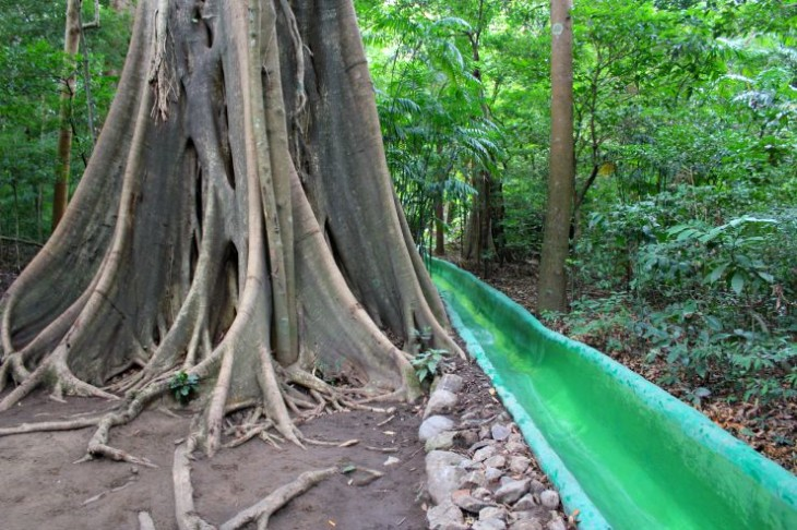 Buena Vista Lodge: Water slide through the rainforest!