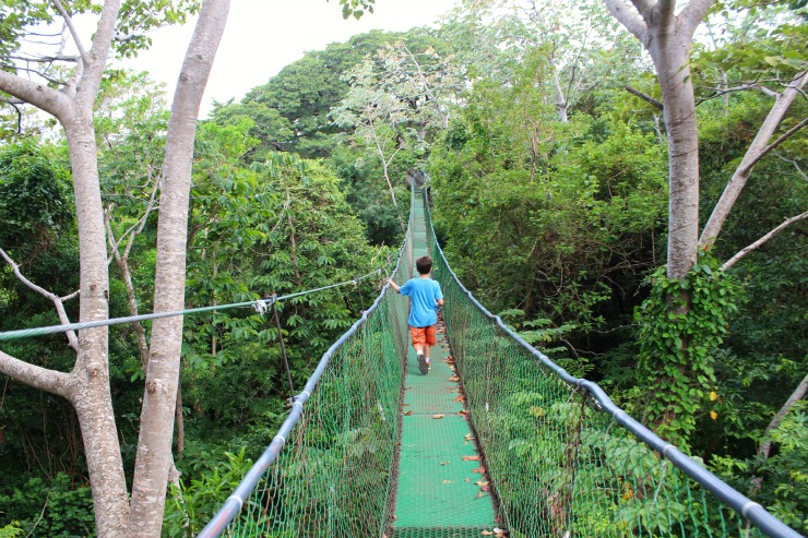 Buena Vista Lodge Hanging Bridges Costa Rica 201508