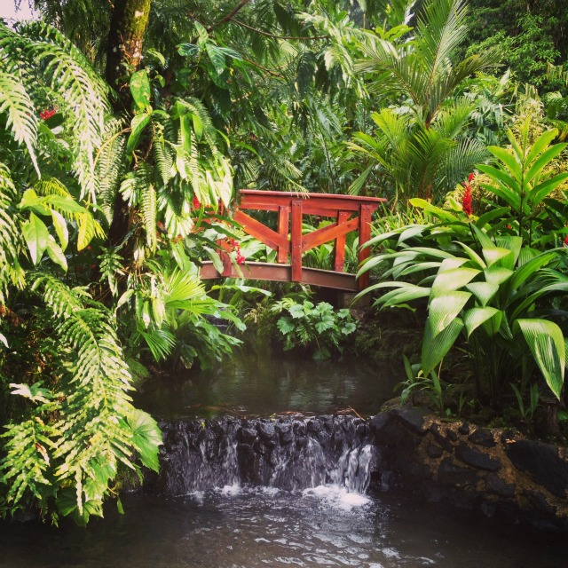 Tabacon Hot Springs Wanderlust Living Costa Rica