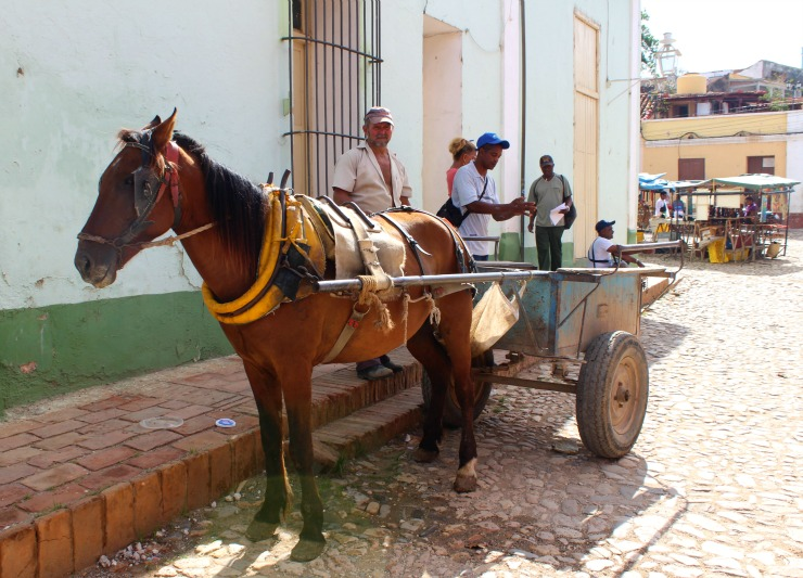Trinidad Cuba horse and cart