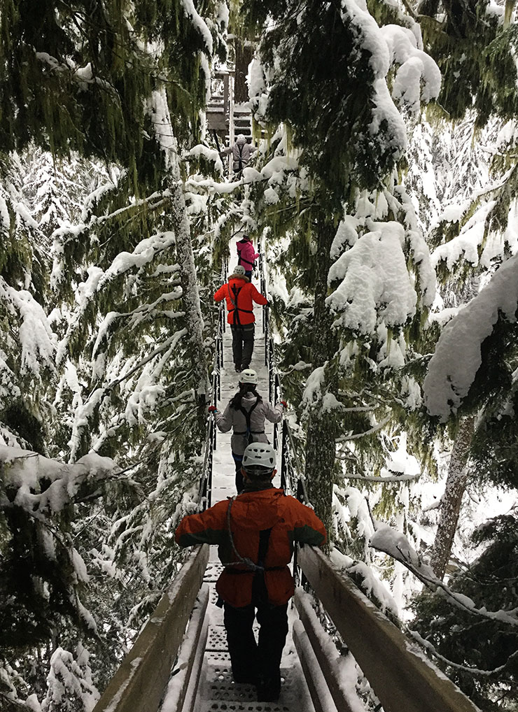 whistler-blackcomb-ziptrek-zip-lining-winter-adventure-wanderlut-living
