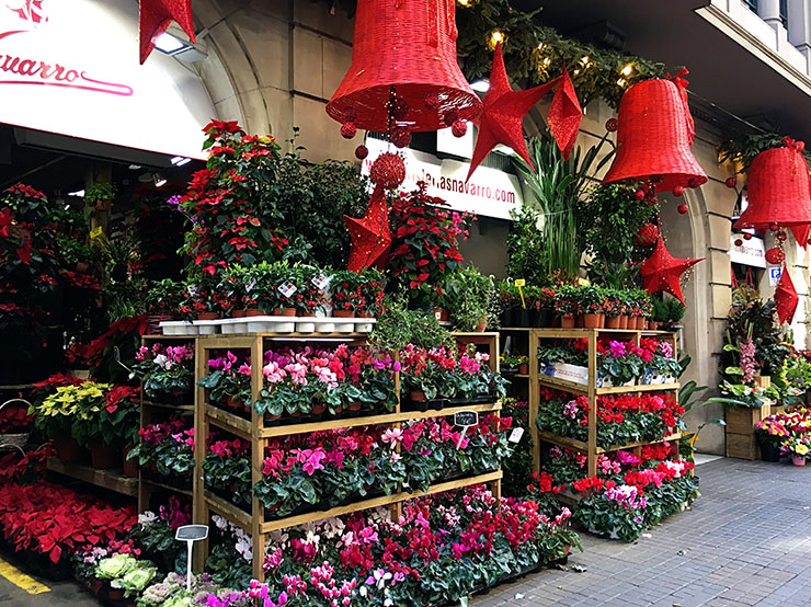 florista-navarro-barcelona-flowers-christmas-time